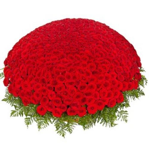 Купить на заказ 301  роза с доставкой в Сатпаеве